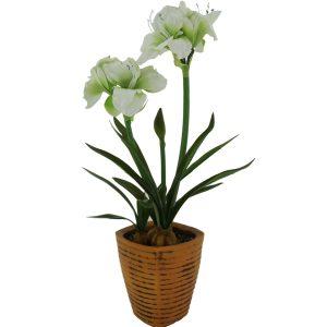 Clivia-Artificial-Plant